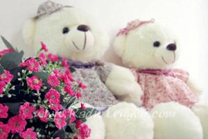 Hoa hồng và gấu Teddy