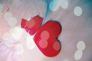 Tình yêu không có lỗi