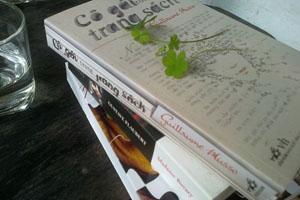 Cô gái trong trang sách - Guillaume Musso
