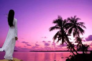 Có một ngày biển tím - Hoàng Thu Dung