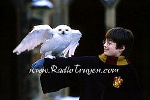 Harry Potter và Hòn đá phù thuỷ (Tập 1) - J.K. Rowling