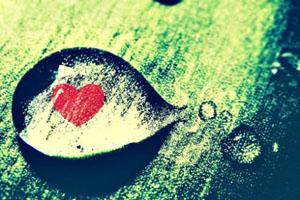 Anh vẫn nợ em một trái tim