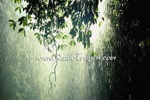 Tại trời mưa - Võ Diệu Thanh