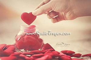 Tháng 11 em sẽ chỉ dành cho những yêu thương