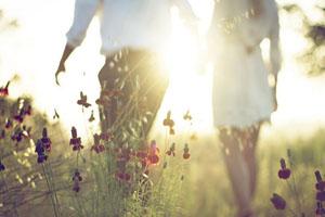 Tình yêu và tham vọng