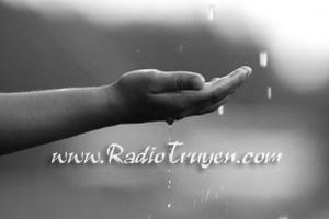 Coi tay vào sáng mưa